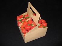 Item No 1016 Berry/Fruit/ Handle Field Container, 1 1/2 Quart,  200 pack