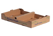Item No 1100  Till kraft 1/2 Pint Shipper Tray  25 pack
