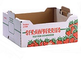 Item No 1214 Strawberry Flat, 4 square quart, 500 pack
