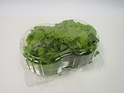 Item No 1249 Double Aquaponics Hinge Container, 250 pack