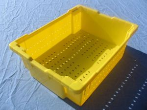 Item No 829  1 1/8 Bushel Harvesting Container, yellow, plastic, vented, 6-pack