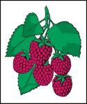 Item No. P21RAS Raspberries Road Sign
