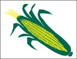 Item No P26CORN Sweet Corn Marketeer