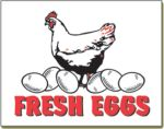 Item No P26EGG  Fresh Eggs Marketeer