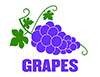 Item No P26GRP   Grapes Marketeer