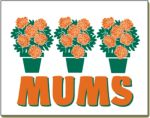 Item No P26MUM  Mums Marketeer