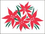 Item No P26POI Poinsettia Marketeer