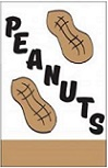 "Item No P28PEANUTS    Peanut Flag  28 "" 44 "" long"